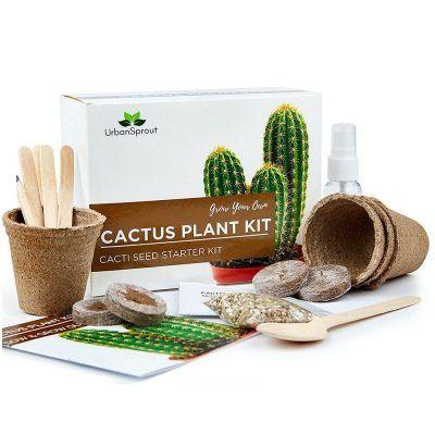 Kit de cultivo