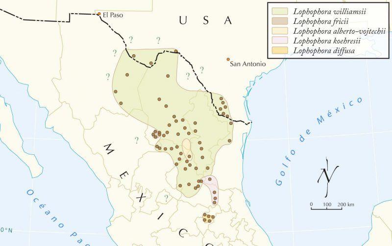 Hábitat del Lophophora diffusa